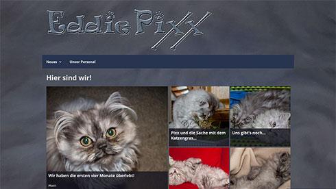 eddiepixx.com